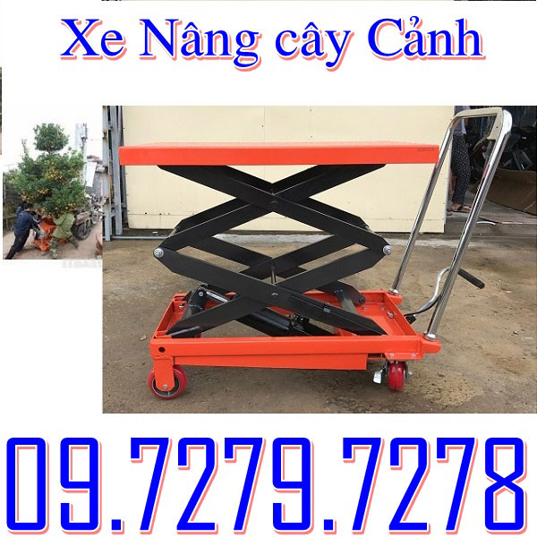 Xe Nâng Cây Cảnh Nhập Khẩu Bán Giá Tốt Nhất Tại Việt Nam.